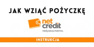 NetCredit pożyczka 3000 zł na 30 dni 1